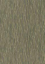 Erismann Spotlight 10107-33 Natur Grafikus vonalmintázat sötétszürke/antracit arany tapéta