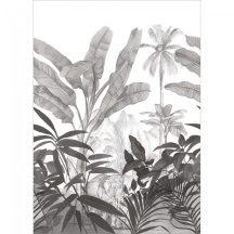 Natur trópusi festői szépségű indiai dzsungel elefánttal fehér szürke fekete falpanel
