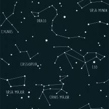 Caselio Our Planet 101916918 CONSTELLATIONS Gyerekszobai Csillagképek kék fehér tapéta