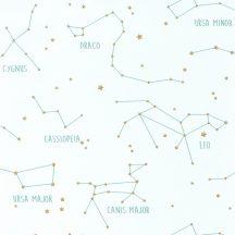 Caselio Our Planet 101917125 CONSTELLATIONS Gyerekszobai Csillagképek fehér vízzöld arany tapéta