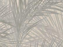 BN ZEN 218740 PALM LUST Natur trópusi nagyméretű pálmalavelek bézs barna szürke tapéta