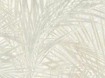 BN ZEN 218741 PALM LUST Natur trópusi nagyméretű pálmalavelek krémfehér bézs barna szürke szürkészöld tapéta