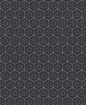 BN Finesse Dimensions 219561 geometrikus hatszögek kockák fekete ezüst tapéta