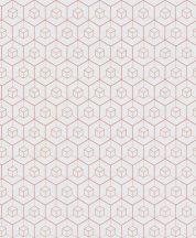 BN Finesse Dimensions 219564 geometrikus hatszögek kockák fehér rózsaszín tapéta