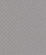 BN Finesse 219723  Art Deco geometikus grafikus körök szürke szürkésbarna ezüst tapéta