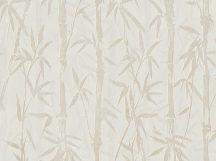 BN ZEN 220320 BAMBOO GARDEN Natur Botanikus bambuszliget krém szürkésbézs finom fémes fény tapéta