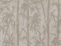 BN ZEN 220324 BAMBOO GARDEN Natur Botanikus bambuszliget szürkésbézs szürkésbarna finom fémes fény tapéta