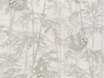 BN Doodleedo 220710 HANGING IN THERE Gyerekszobai bambuszfákon csüngő koalák fehér szürke ezüst tapéta