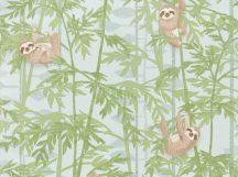 BN Doodleedo 220711 HANGING IN THERE Gyerekszobai bambuszfákon csüngő koalák zöld szürke barna tapéta