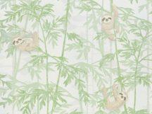 BN Doodleedo 220712 HANGING IN THERE Gyerekszobai bambuszfákon csüngő koalák fehér zöld bézs barna tapéta