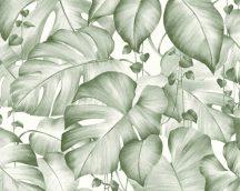 As-Creation Colibri 36627-2 natur organikus dzsugel fehér zöld tapéta