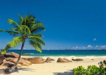 Komar Seychellen 4-006 poszter