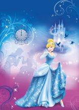 Cindarella's Night 4-407  Disney poszter