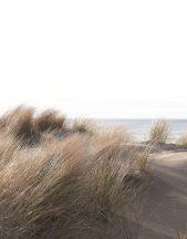 Marburg Smart Art Easy 47219 Natur Dűnés tengerparti táj krém bézs homokszürke kek fehér falpanel