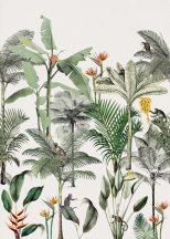 Natur magas pálmák banánfák gyümölcsfürttel egzotikus virágok fehér szines falpanel