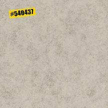 Rasch #ROCKENROLLE 540437 Natur strukturált ipari design meleg szürke árnyalatok fémes hatás tapéta