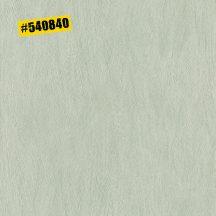 Rasch #ROCKENROLLE 540840  Egyszínű strukturált zöld árnyalatok fémes hatás tapéta