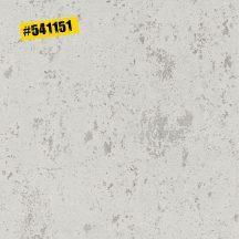 Rasch #ROCKENROLLE 541151  Natur durva vakolatlan fal szürke szürkésbézs meleg szürke tapéta