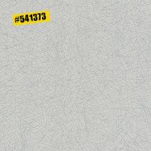 Rasch #ROCKENROLLE 541373  Natur sűrű hálózat/kötés minta világos szürke ezüst fémes hatás tapéta