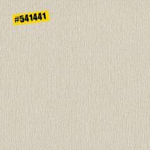 Rasch #ROCKENROLLE 541441 Egyszínű strukturált vonalkázott váltakozva matt-csillogó világos bézs tapéta
