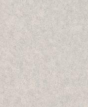 Rasch Andy Wand 649321 Natur Egyszínű világosszürke szürke lakkfényű ezüst akcentusok tapéta