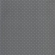 Caselio Tonic 69459707  grafikus antracit  ezüst tapéta