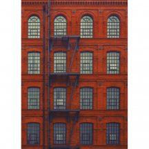 Caselio Tonic 69528112 ház homlokzata tűzlétrával New York téglavörös barna falpanel