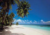 Komar Maldives 8-240 poszter