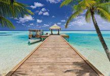 Komar Beach Resort 8-921 poszter