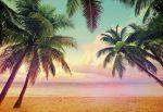 Komar Miami 8-967  poszter