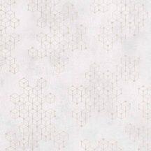 Novamur Hailey 82243 (6797-40) Natur Geometrikus Beton háttéren hatszögek kockák 3D kérm bézs ezüst tapéta