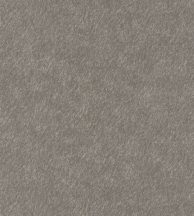 Casadeco Encyclopedia 82511505  PELAGUS TAUPE egyszínű texturált karcolt minta szürkésbarna tapéta