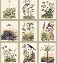 Casadeco Encyclopedia 83341466 PANORAMIQUE HERBARIUM Natur festői portrék vidéktől az egzotikus dzsungelig krém bézs szines falpanel