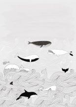 Rasch Bambino XVIII 842531  gyerekminta natur kékbálna kardszárnyú delfin világos szürke fehér fekete falpanel