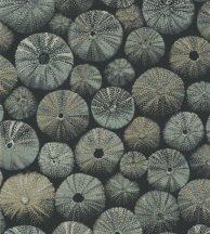 ACHINOS VERT Natur mélytengeri világ tengeri sünök fekete fémes zöld és arany tapéta