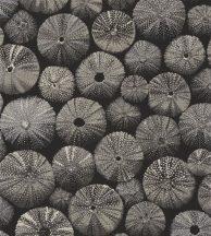 ACHINOS NOIR Natur mélytengeri világ tengeri sünök fekete szürke fémes ezüst  tapéta