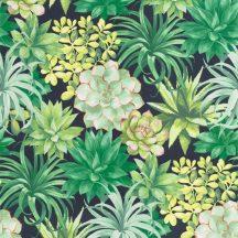 Casadeco Botanica 85917396 ECHEVERIA Botanikus pozsgás növények aloe vera és crassula antracit zöld árnyalatok pink fehér tapéta