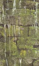 Rasch b.b home passion 861303 patak csorgadozó vize mohás köveken zöld szürke barna tapéta