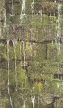 Rasch b.b home passion 861303 Natur patak csorgadozó vize mohás köveken zöld szürke barna tapéta