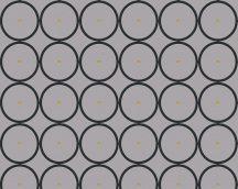 As-Creation Raffi  94019-1 Geometrikus grafikus körök sorba oszlopba rendezve szürke fekete fémes arany tapéta