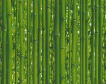 As-Creation Dekora Natur 6, 95936-1  tapéta