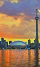 City Love CL-10A Toronto vliesposzter