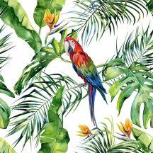 DD116614 Natur trópusi virágos dzsungel motívum ara papagájjal fehér szines digitális nyomat
