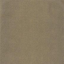 Caselio Green Life 101579120  UNI METALLISSÉ Egyszínű strukturált textil feketearany fémes hatás tapéta