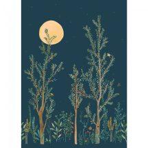 Caselio Green Life 101666520 MIDNIGHT WALK Natur természeti kép holdfényben sötétkék barna zöld korall arany falpanel