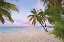 Komar Paradise Morning XXL4-528 vliesposzter